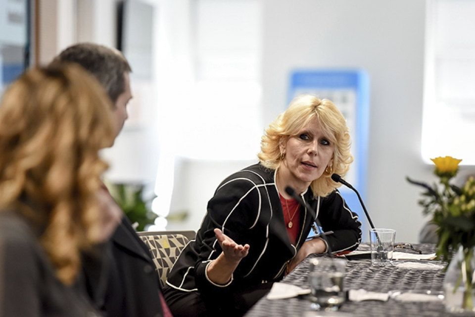 Prof. Connie Uthoff speaking on a panel